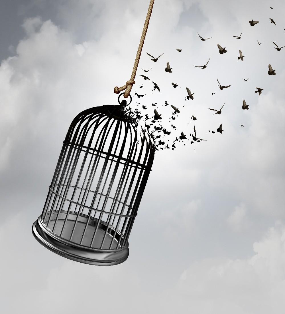 psicoterapia individuale gabbia psiche