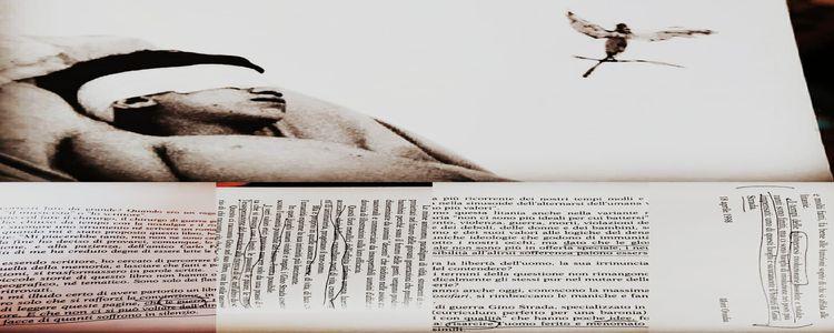 Gino Strada, Pappagalli verdi